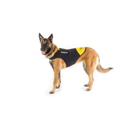 L-es méretű, fekete-sárga Neoprén IDC kutyaruha