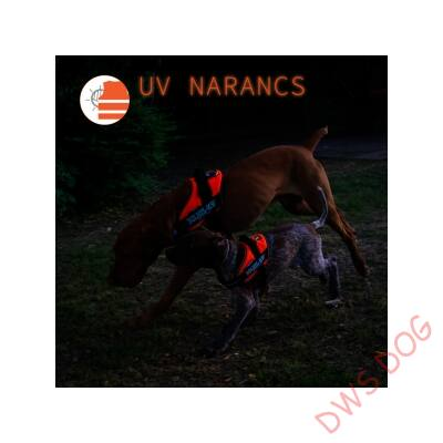 1-es méretű, UV Narancs IDC kutyahám