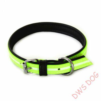 IDC Lumino neon, 45 cm, kutyanyakörv
