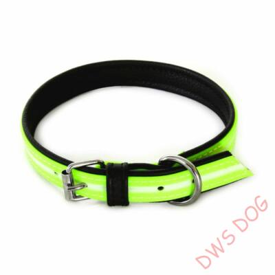 IDC Lumino neon, 70 cm, kutyanyakörv