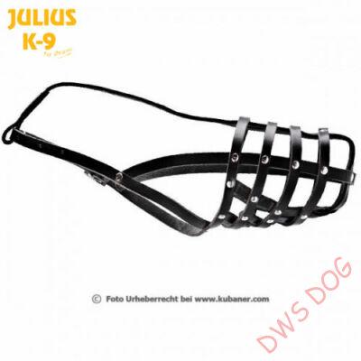 Julius-K9 - 171D4 - Dobermann, Collie bőrszájkosár